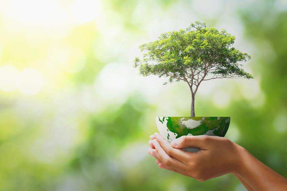Hari Bumi Sedunia / International Earth Day